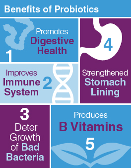 Benefits of Probiotics for Mom & Baby