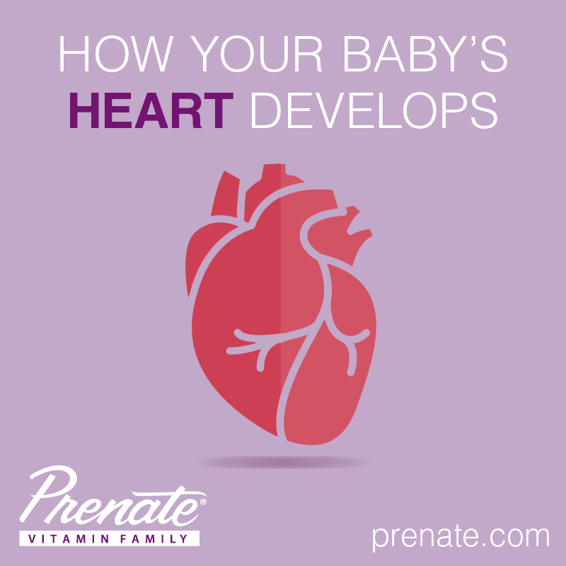 Infant Heart Health