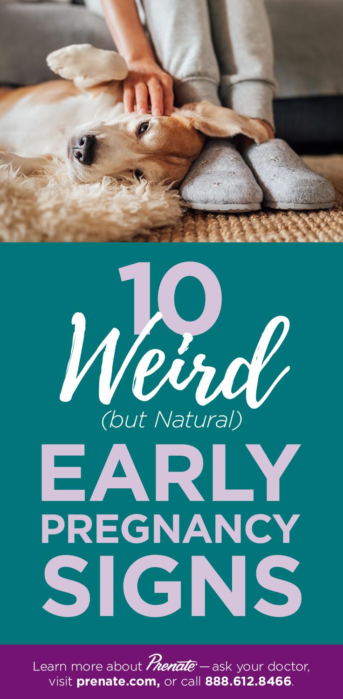 10 Weird Pregnancy Signs graphic